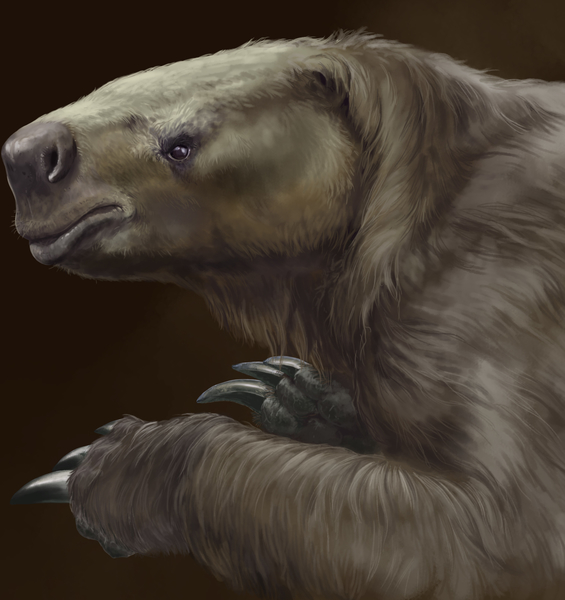 The Giant Sloths of the Pleistocene