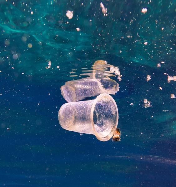 Manta River Project is the first Italian scientific project on microplastics along the Po River