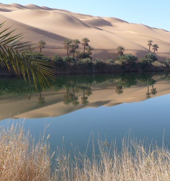 The Sahara was green and populated: the genomic tale of the human evolution