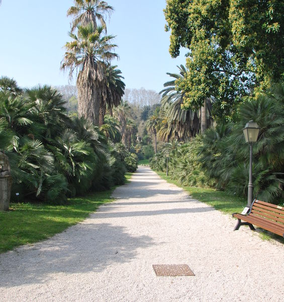 The Botanical Garden of Rome reopens to the public